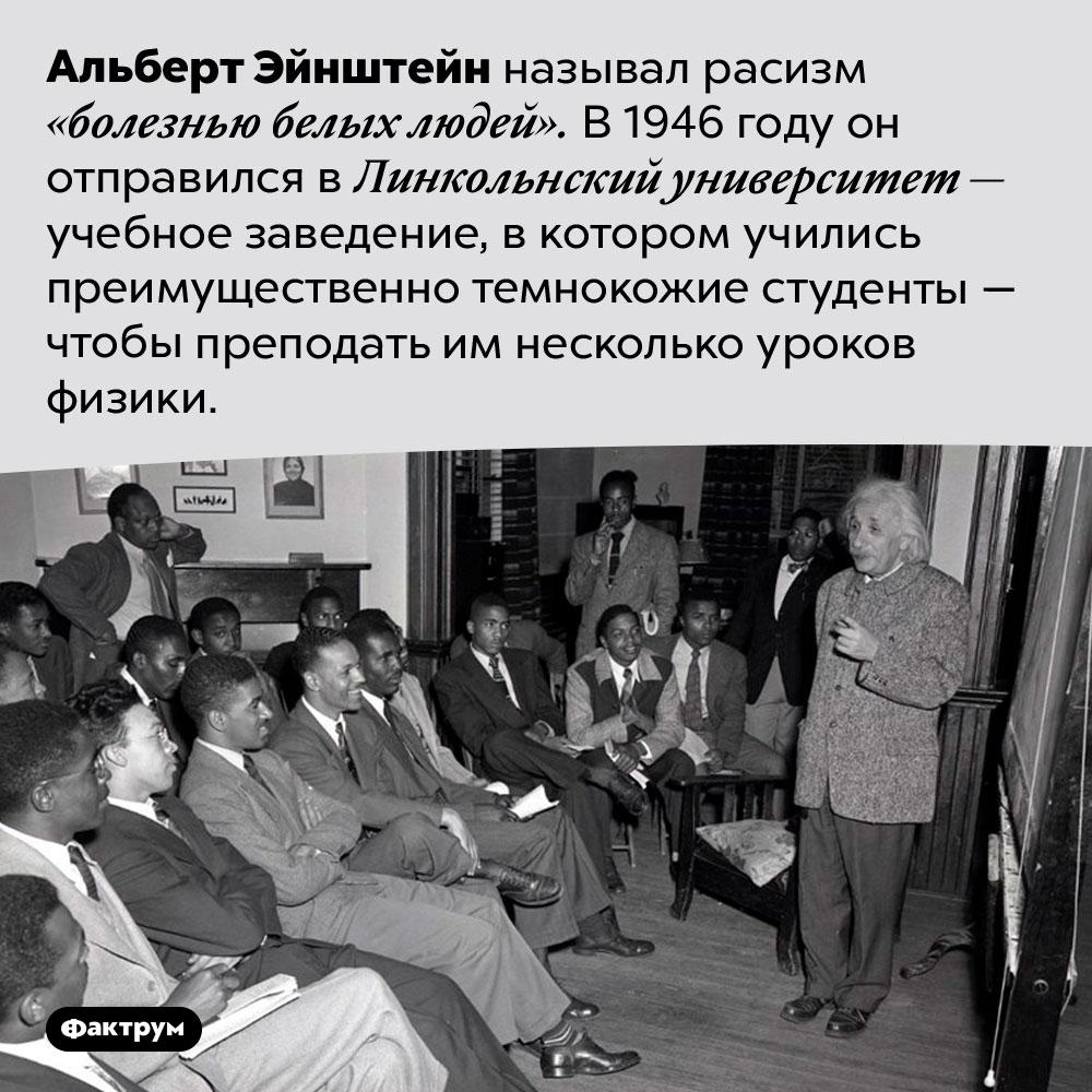 Альберт Эйнштейн ненавидел расизм. Альберт Эйнштейн называл расизм «болезнью белых людей». В 1946 году он отправился в Линкольнский университет — учебное заведение, в котором учились преимущественно темнокожие студенты — чтобы преподать им несколько уроков физики.