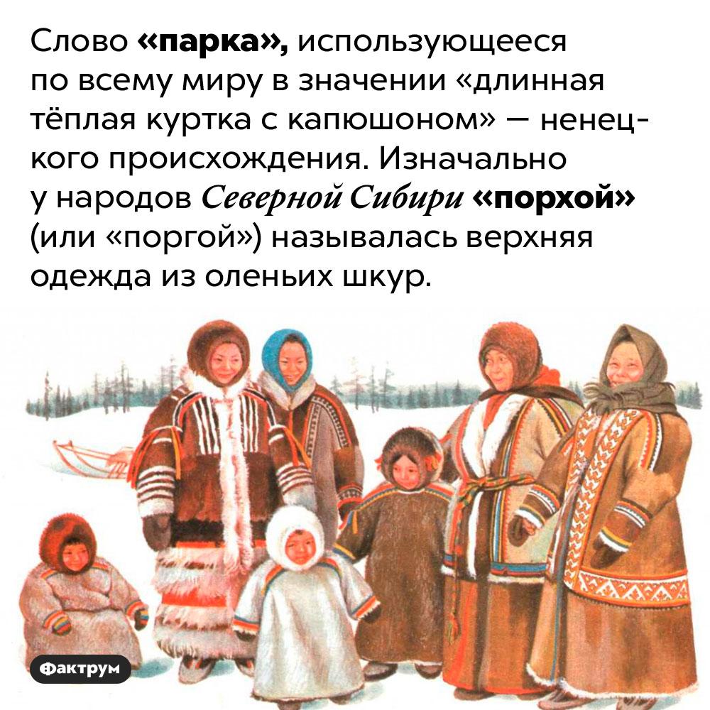 Единственное слово жителей Крайнего Севера, ставшее международным. Слово «парка», использующееся по всему миру в значении «длинная тёплая куртка с капюшоном» — ненецкого происхождения. Изначально у народов Северной Сибири «порхой» (или «поргой») называлась верхняя одежда из оленьих шкур.