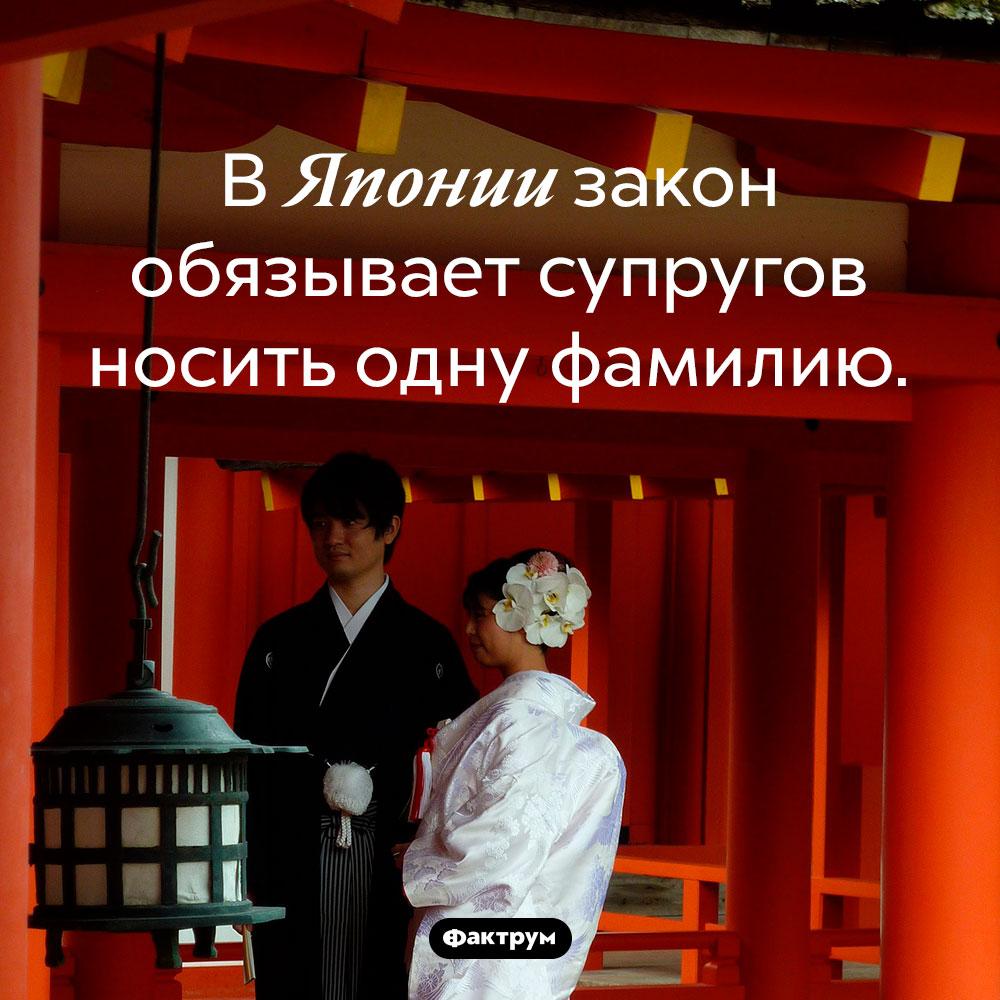 Японский закон обязывает супругов иметь одинаковую фамилию. В Японии закон обязывает супругов носить одну фамилию.