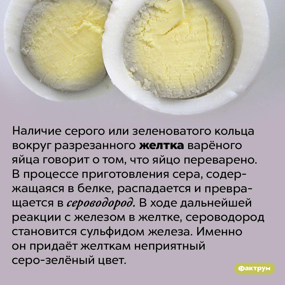 Откуда берётся серое кольцо вокруг желтка сваренного яйца. Наличие серого или зеленоватого кольца вокруг разрезанного желтка варёного яйца говорит о том, что яйцо переварено. В процессе приготовления сера, содержащаяся в белке, распадается и превращается в сероводород. В ходе дальнейшей реакции с железом в желтке, сероводород становится сульфидом железа. Именно он придаёт желткам неприятный серо-зелёный цвет.