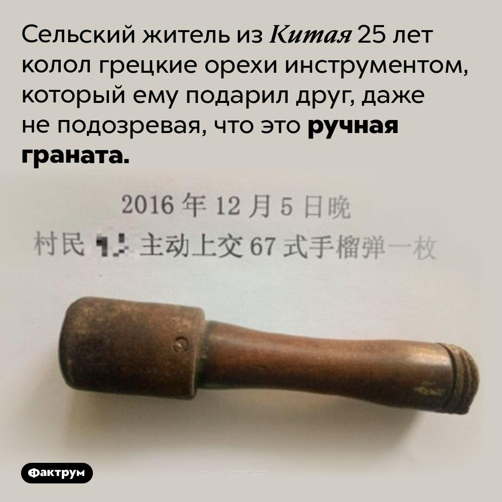 Граната для колки орехов. Сельский житель из Китая 25 лет колол грецкие орехи инструментом, который ему подарил друг, даже не подозревая, что это ручная граната.