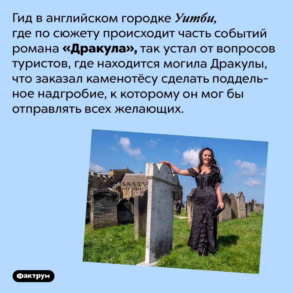 Где находится могила Дракулы. Гид в английском городке Уитби, где по сюжету происходит часть событий романа «Дракула», так устал от вопросов туристов, где находится могила Дракулы, что заказал каменотёсу сделать поддельное надгробие, к которому он мог бы отправлять всех желающих.