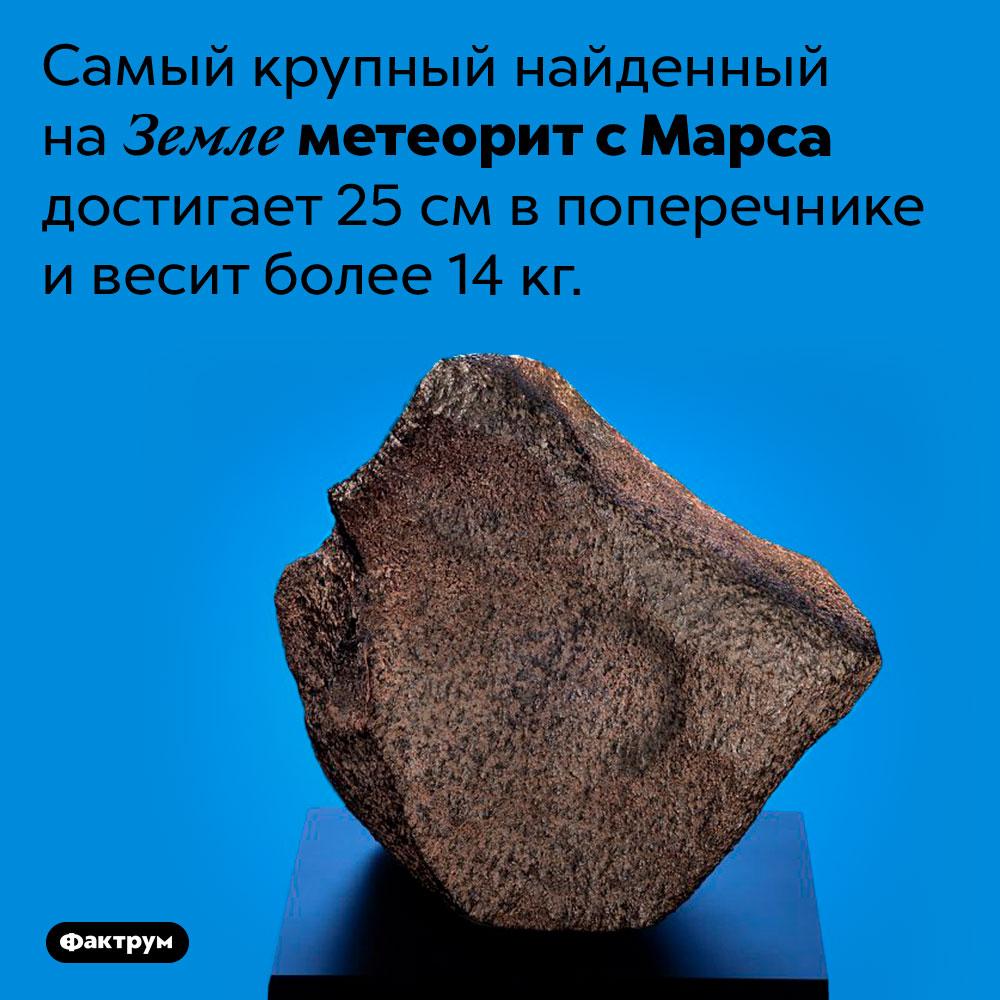 Самый крупный марсианский метеорит. Самый крупный найденный на Земле метеорит с Марса достигает 25 см в поперечнике и весит более 14 кг.