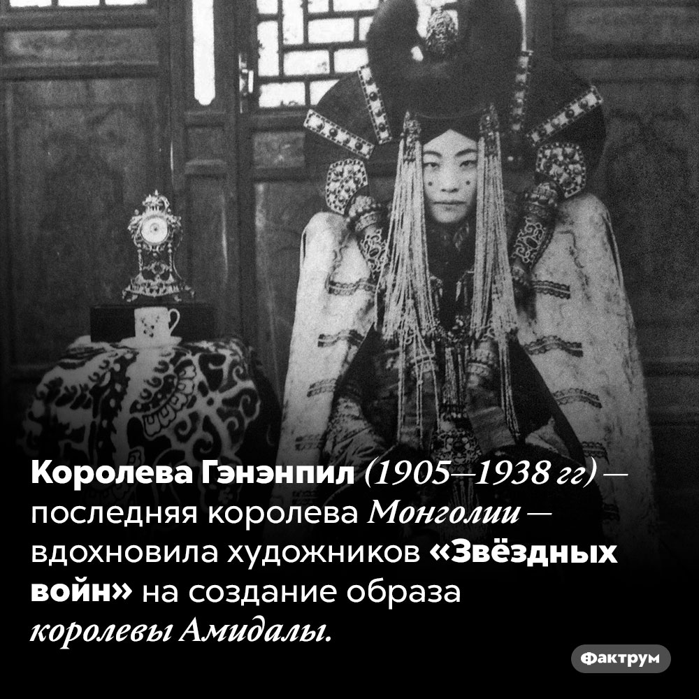 Прообраз королевы Амидалы — последняя королева Монголии. Королева Гэнэнпил (1905—1938 гг) — последняя королева Монголии — вдохновила художников «Звёздных войн» на создание образа королевы Амидалы.