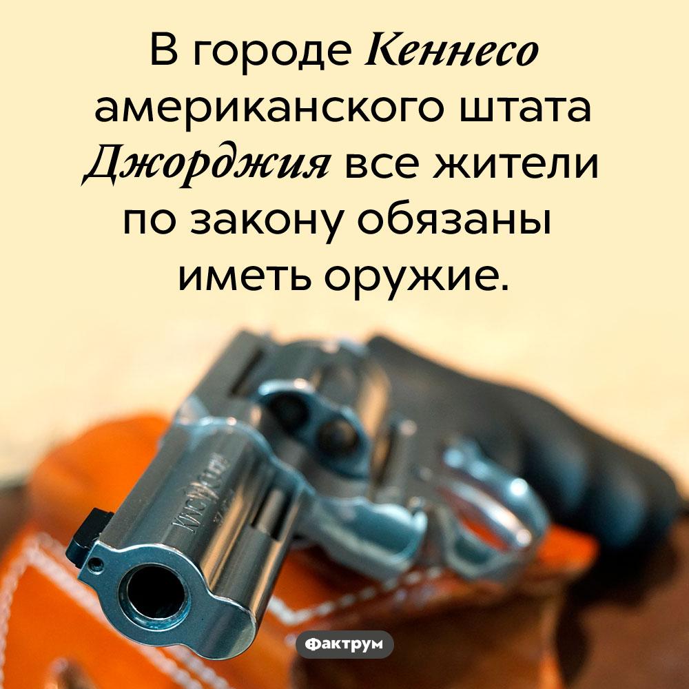 Закон Кеннесо, США, обязывает жителей иметь оружие. В городе Кеннесо американского штата Джорджия все жители по закону обязаны иметь оружие.