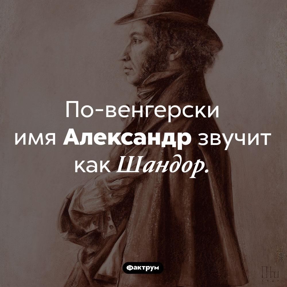 Как по-венгерски звучит имя Александр. По-венгерски имя Александр звучит как Шандор.