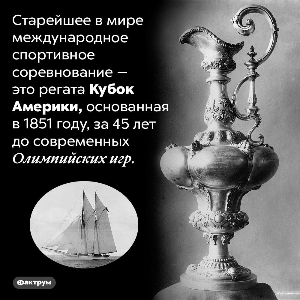 Самое старое вмире международное спортивное соревнование. Старейшее в мире международное спортивное соревнование — это регата Кубок Америки, основанная в 1851 году, за 45 лет до современных Олимпийских игр.