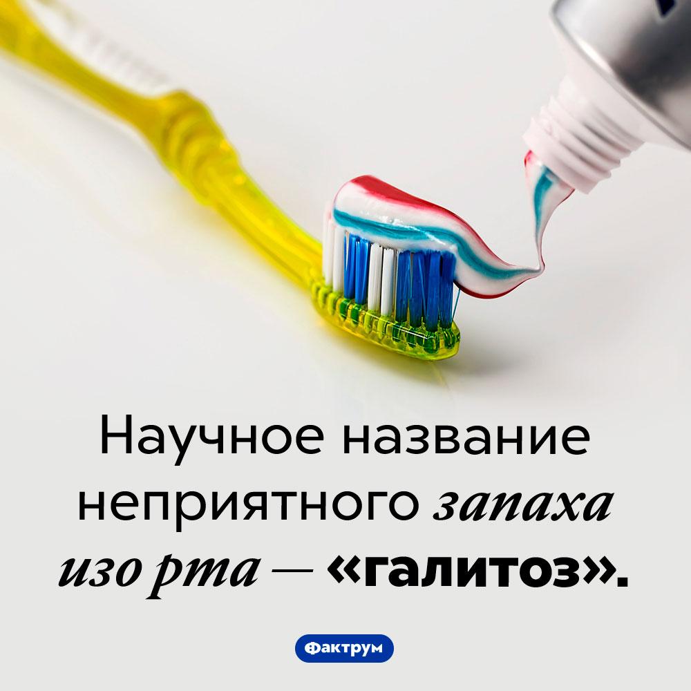 Как называется неприятный запах изорта. Научное название неприятного запаха изо рта — «галитоз».