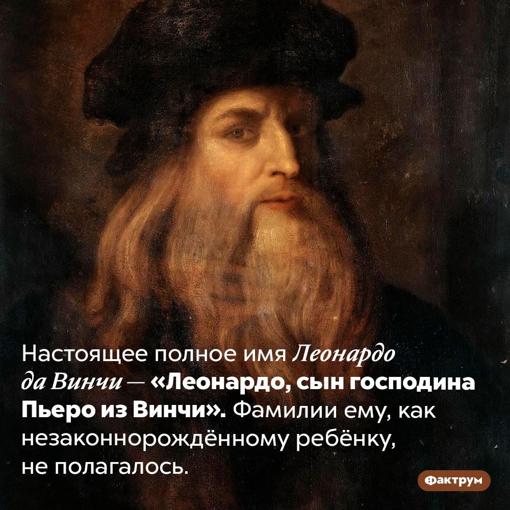 Настоящее имя Леонардо даВинчи. Настоящее полное имя Леонардо да Винчи — «Леонардо, сын господина Пьеро из Винчи». Фамилии ему, как незаконнорождённому ребёнку, не полагалось.