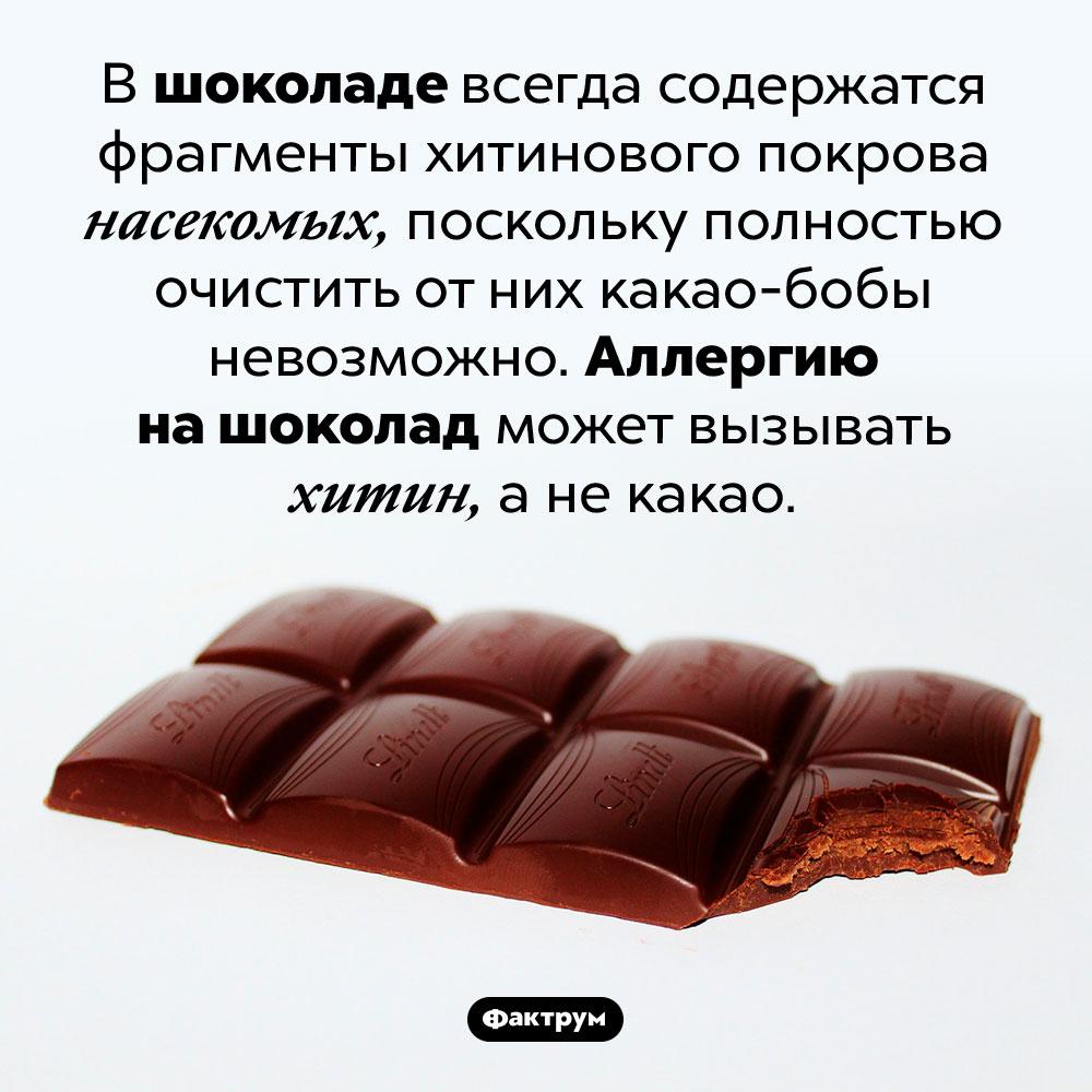 Насекомые вшоколаде. В шоколаде всегда содержатся фрагменты хитинового покрова насекомых, поскольку полностью очистить от них какао-бобы невозможно. Аллергию на шоколад может вызывать хитин, а не какао.