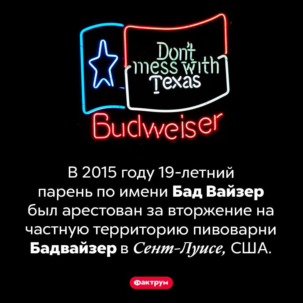 Бад Вайзер иБадвайзер. В 2015 году 19-летний парень по имени Бад Вайзер был арестован за вторжение на частную территорию пивоварни Бадвайзер в Сент-Луисе, США.