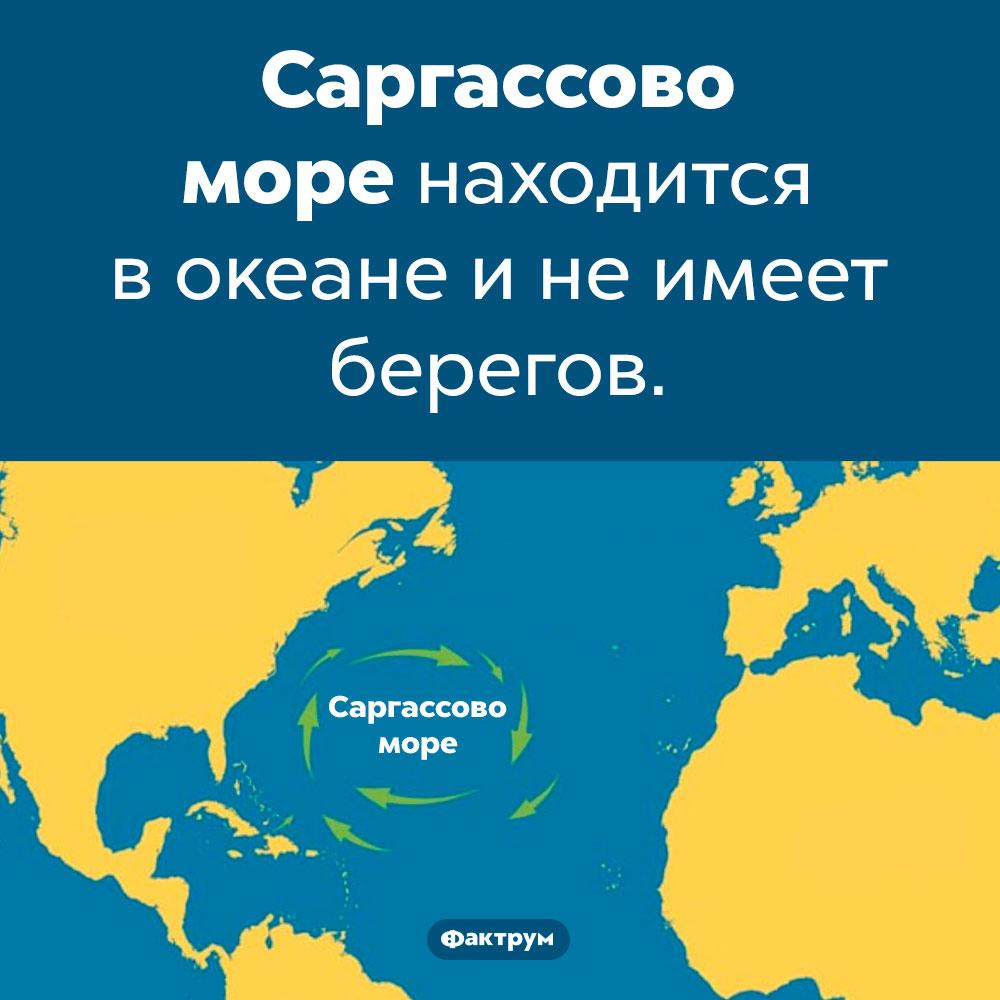 Где находится Саргассово море. Саргассово море находится в океане и не имеет берегов.