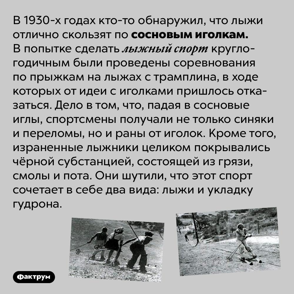 Сосновые лыжи. В 1930-х годах кто-то обнаружил, что лыжи отлично скользят по сосновым иголкам. В попытке сделать лыжный спорт круглогодичным были проведены соревнования по прыжкам на лыжах с трамплина, в ходе которых от идеи с иголками пришлось отказаться. Дело в том, что, падая в сосновые иглы, спортсмены получали не только синяки и переломы, но и раны от иголок. Кроме того, израненные лыжники целиком покрывались чёрной субстанцией, состоящей из грязи, смолы и пота. Они шутили, что этот спорт сочетает в себе два вида: лыжи и укладку гудрона.