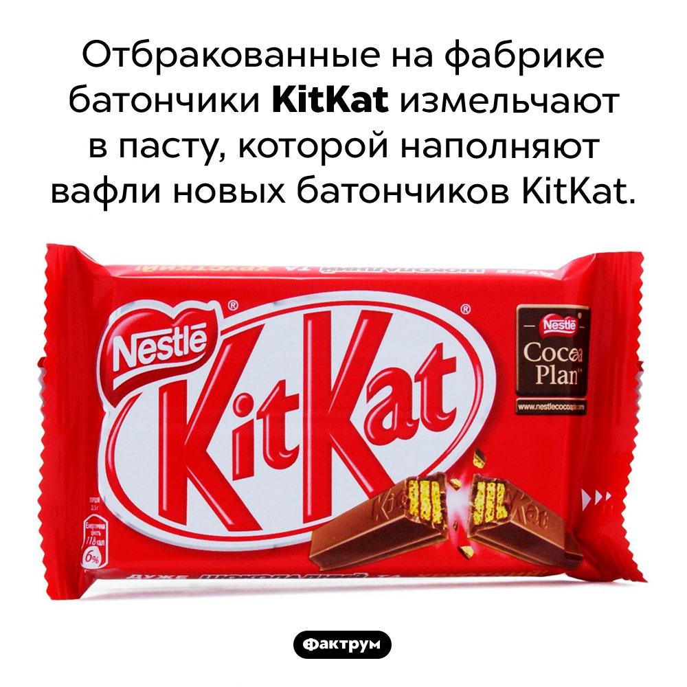 Чем наполнены вафли вбатончиках <em>KitKat</em>. Отбракованные на фабрике батончики <em>KitKat</em> измельчают в пасту, которой наполняют вафли новых батончиков <em>KitKat.</em>