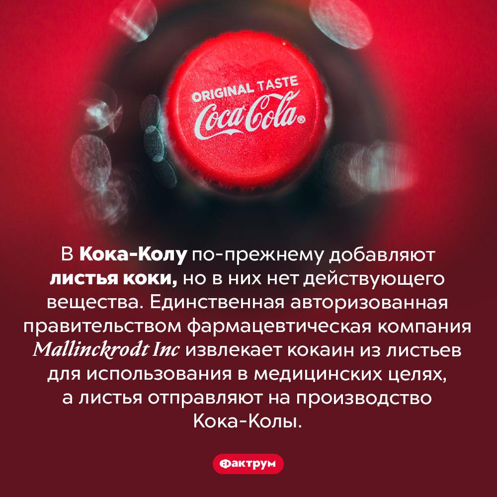 Есть ли кока вколе?. В Кока-Колу по-прежнему добавляют листья коки, но в них нет действующего вещества. Единственная авторизованная правительством фармацевтическая компания <em>Mallinckrodt Inc</em> извлекает кокаин из листьев для использования в медицинских целях, а листья отправляют на производство Кока-Колы.