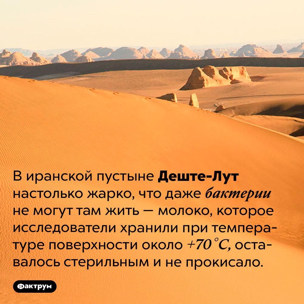 Впустыне Деште-Лут молоко нескисает. В иранской пустыне Деште-Лут настолько жарко, что даже бактерии не могут там жить — молоко, которое исследователи хранили при температуре поверхности около +70 °C, оставалось стерильным и не прокисало.