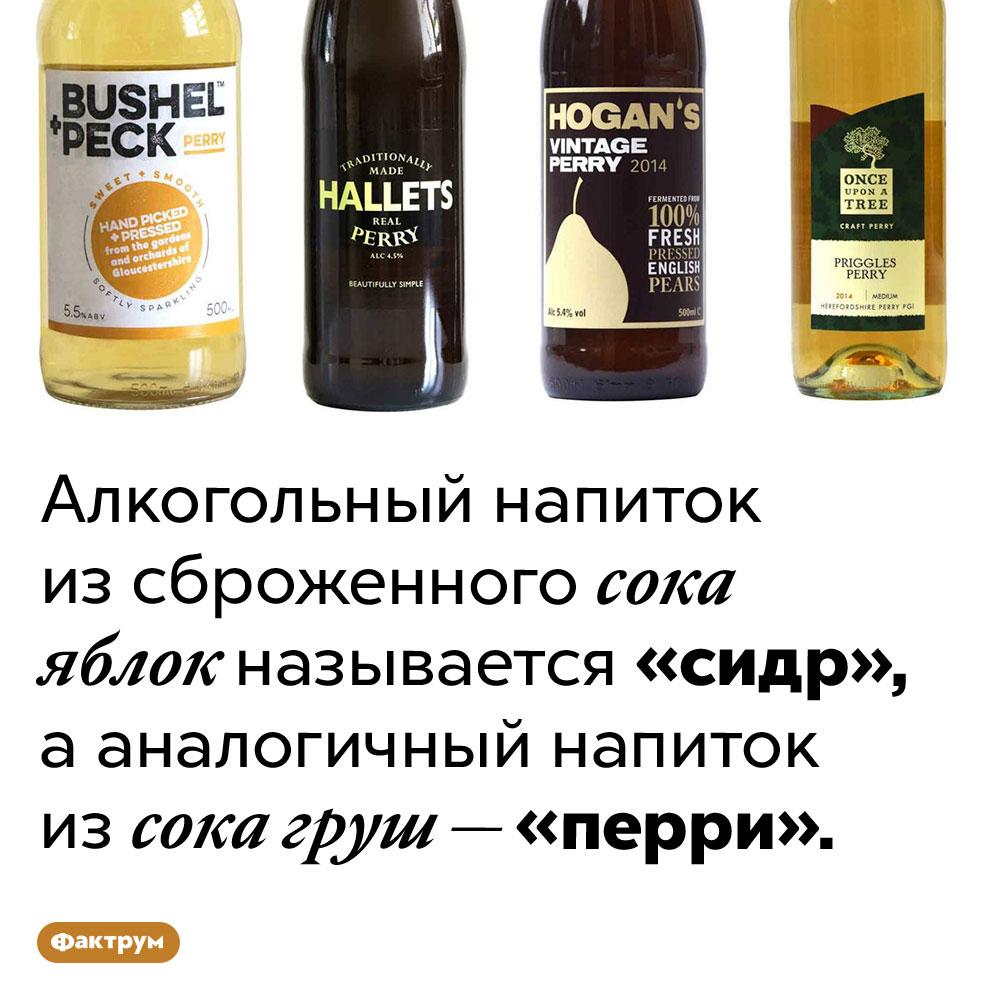 Как называется грушевый сидр. Алкогольный напиток из сброженного сока яблок называется «сидр», а аналогичный напиток из сока груш — «перри».