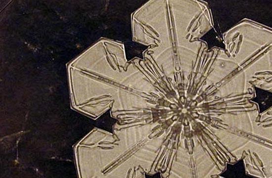 Первые детальные фотографии снежинок были сделаны в начале 20-го века