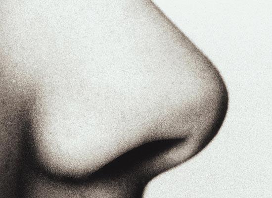 У человека четыре ноздри