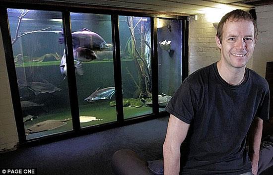 Самый большой домашний аквариум в Великобритании занимает целую комнату