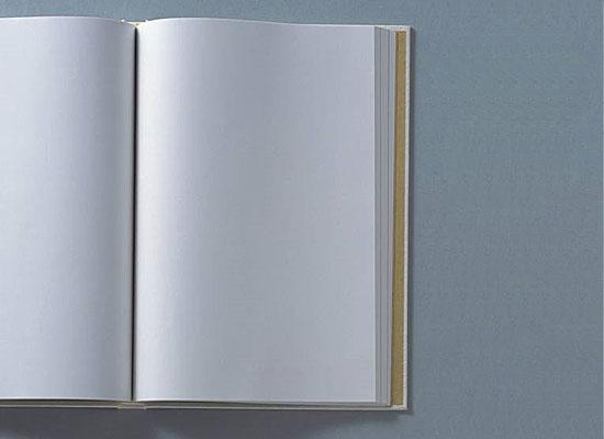 Книга «О чём мужчины думают помимо секса» состоит из двухсот пустых страниц