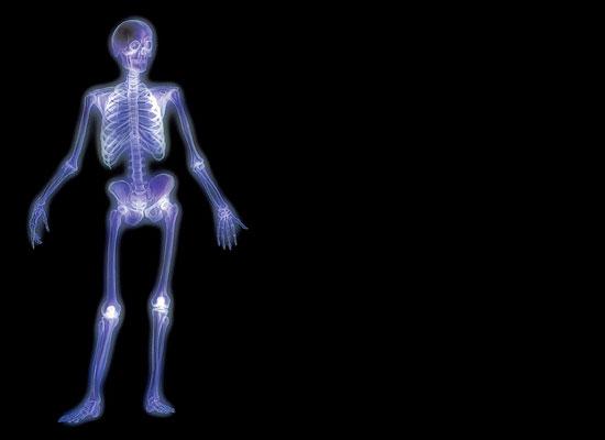 15 фактов о человеческом организме