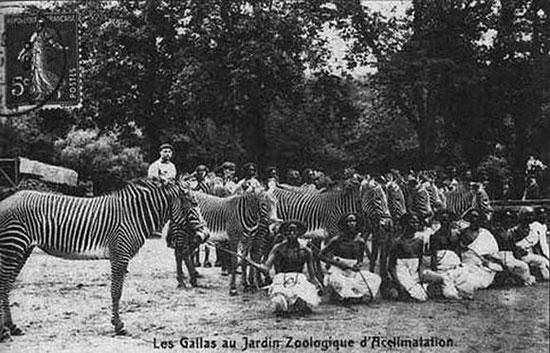 В конце 19 – начале 20 века в Европе были очень популярны человеческие зоопарки