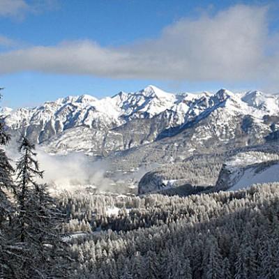 В Австрии, Германии и Швейцарии существовали целые деревни, населённые только кретинами