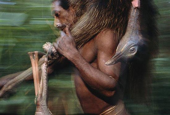Племя короваи живёт на деревьях, не носит одежду и практикует каннибализм
