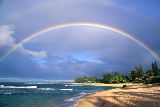 Когда вы ищите в Google что-нибудь про геев (на англ.), у строки поиска появляется радуга