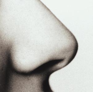 Назофилия — это сексуальное возбуждение от носа партнера