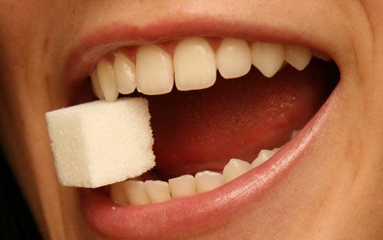 С помощью биотехнологии в почках мыши можно выращивать зубы