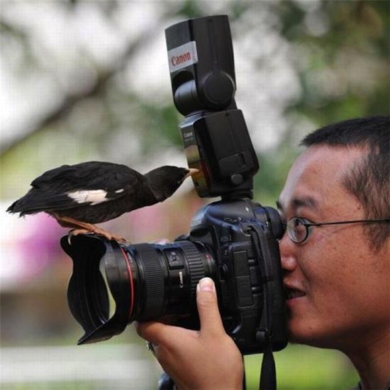 Птичка, которая «должна вылететь из фотоаппарата» во время съемки, действительно существовала