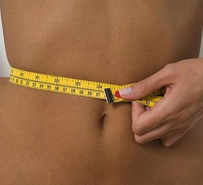Количество жировых клеток человека остаётся неизменным всю жизнь