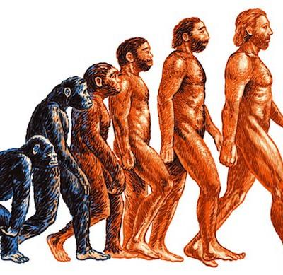 7 теорий о том, почему у людей не растут волосы на теле