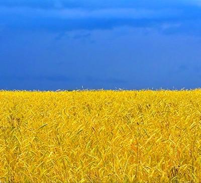 20 фактов об Украине