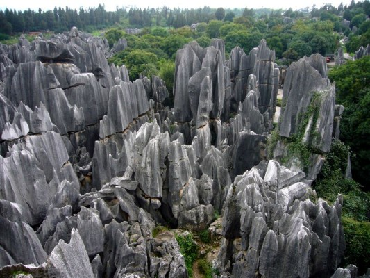 Каменный лес