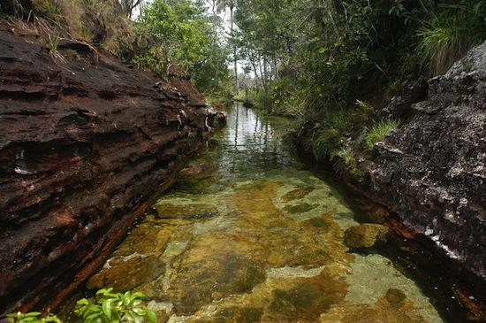 Самая красивая река в мире — это «река пяти цветов» Каньо Кристалес