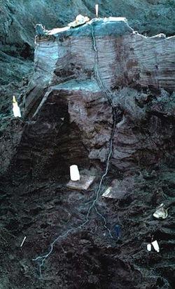 При попадании молнии в поверхность Земли, в ней остаются ветвистые стеклянные трубки