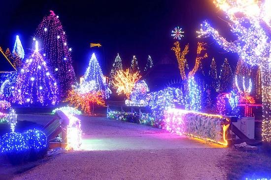 В Хорватии есть сияющая «рождественская сказка»