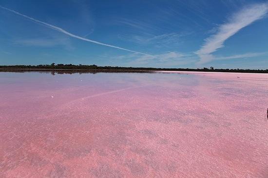 В Австралии есть розовое озеро