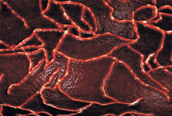 Российские учёные синтезировали новый аналог паутинного белка