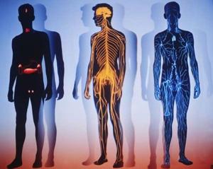 Человеческий организм выделяет литр газа в сутки