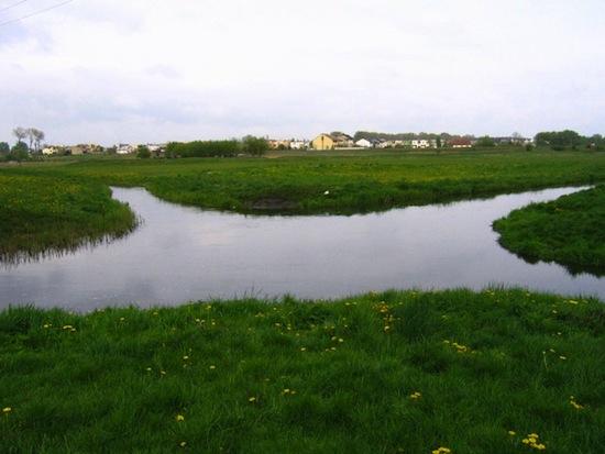 Реки Велна и Нельба пересекаются под прямым углом и не смешиваются