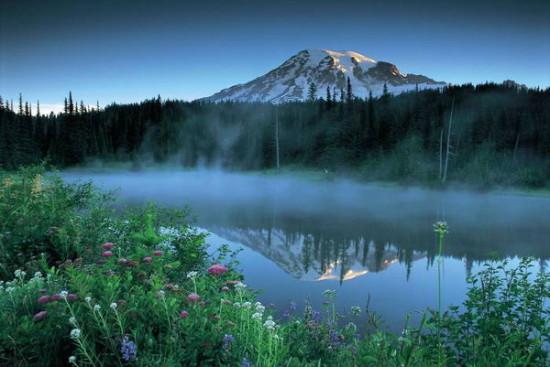 С физиологической точки зрения самый приятный объект для созерцания — природа