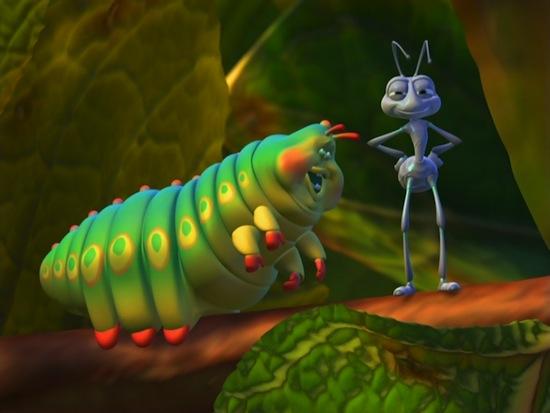 Жизнь жуков