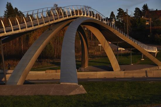 Картинки по запросу Мост Леонардо да Винчи