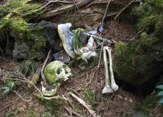 Аокигахара — это лес самоубийц