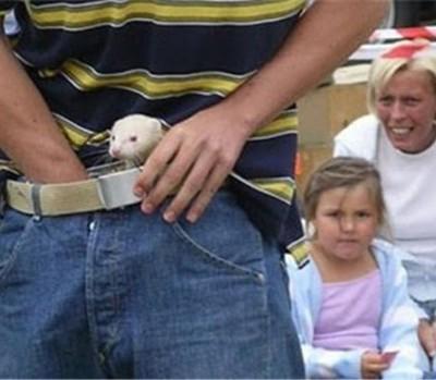Ferret Legging — это вид спорта, в котором нужно засовывать хорька в штаны