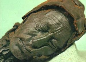В Северной Европе есть болото человеческих органов
